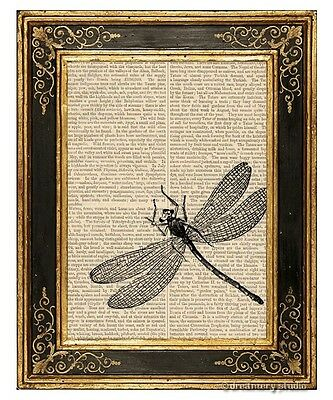 - Dragonfly Art Print on Vintage Book Page Home Garden Office Hanging Decor Gifts