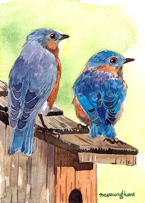 ACEO Limited Edition- Bluebirds in a birdhouse, BIrd art print, Home decor idea