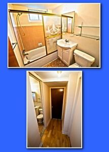 Bachelor Apt a louer / for rent
