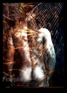 Original-SURREAL-MALE-NUDE-Man-Naked-Butt-Signed-Art-Photograph-By-KELLY-WRIGHT
