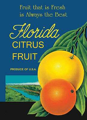 Crate Label Best Orange Citrus Florida Fresh Fruit Vintage Poster Repro FREE S/H