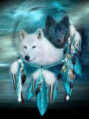 Native American Dream Catcher Night Wolve Spirits 8.5x11 Matte Art