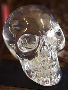 TRANSPARENT CLEAR SKULL Head FIGURE Ornament Pagan Occult GOTHIC - NEW!