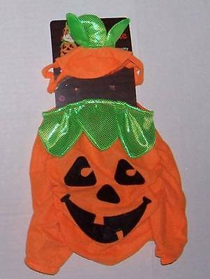 Pumpkin Patch Kitty costume for cat dog Halloween 9