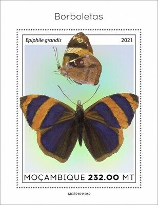 Mozambique 2021 MNH Butterflies Stamps Butterfly Epiphile Grandis 1v S/S II