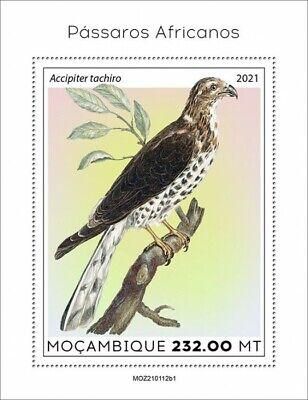 Mozambique 2021 MNH African Birds on Stamps African Goshawk Raptors 1v S/S I