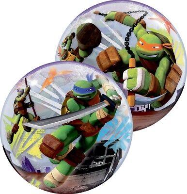 Teenage Mutant Ninja Turtles 22