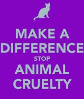 Education and fundraising for animals