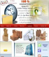 Eye-catching Website Design at 50% Low Cost(Mobile Responsive)