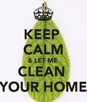 Downtown apartment / house cleaning services