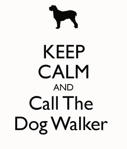 In-city dog walker for hire!