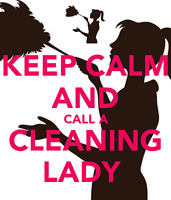 Professional Cleaning Lady