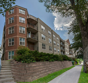 QUIET BUILDING STEPS FROM AMENITIES, 5 APPLIANCES