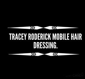 Cardiff Based Fully Qualified Mobile Hairdresser!