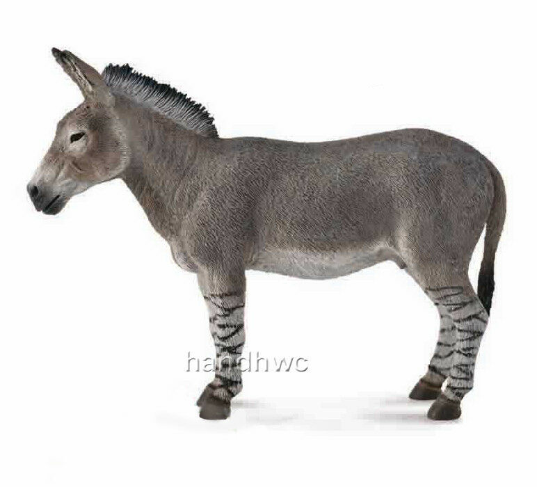 CollectA 88664 African Wild Ass Toy Model Donkey - NIP