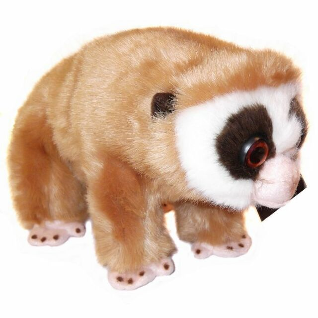 24cm Slow Loris Soft Toy By Dowman Soft Touch - Plush Cuddly Toy
