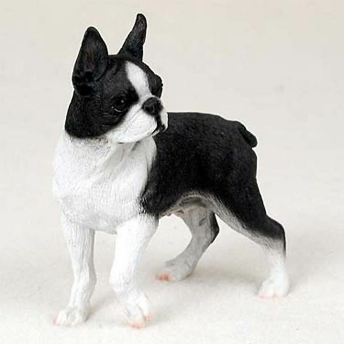 Boston Terrier Figurine Hand Painted Collectible Statue