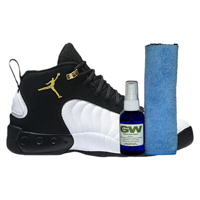 GW PREMIUM SHOE CLEANER KIT FOR NIKE AIR JORDAN SHOES WITH MICROFIBER CLOTH (Jordan Clothes Shoes)
