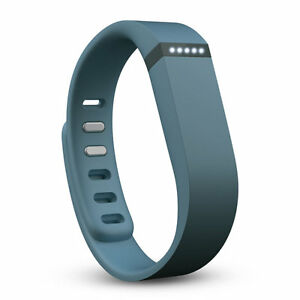 NEW-FitBit-Flex-slate-color-with-SMALL-LARGE-size-wristbands-in-the    Fitbit Colors
