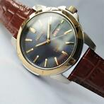 Seiko - Solar Power Day Date 1 Year Power Reserve Gold - Her