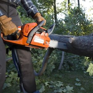 Safe and Afortable Tree cutting ! Get a free quote  now!