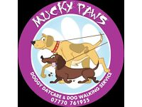 Mucky Paws Dog Day Care/Walker (Currie, Balerno, Baberton, Colinton, Marchmont, Grange, )