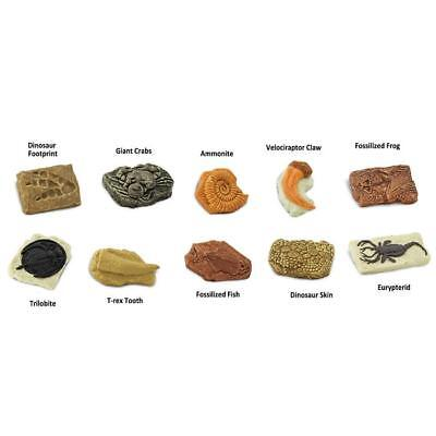 ANCIENT FOSSILS Toob # 684804 ~ FREE SHIPPING in USA w/$25+Safari Products