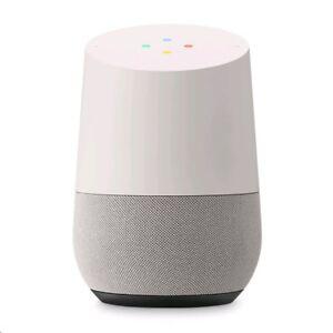 Google Home - Blanc/Ardoise - White/Slate