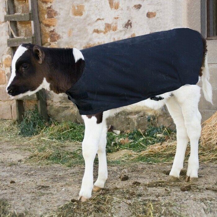 Calf Coats Nylon Waterproof Livestock Calf Blanket Large