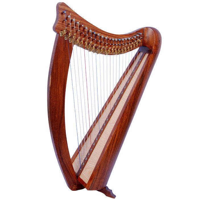 recording studio harp
