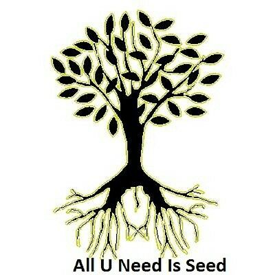 ALL U NEED IS SEED