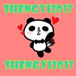 shengyi2017