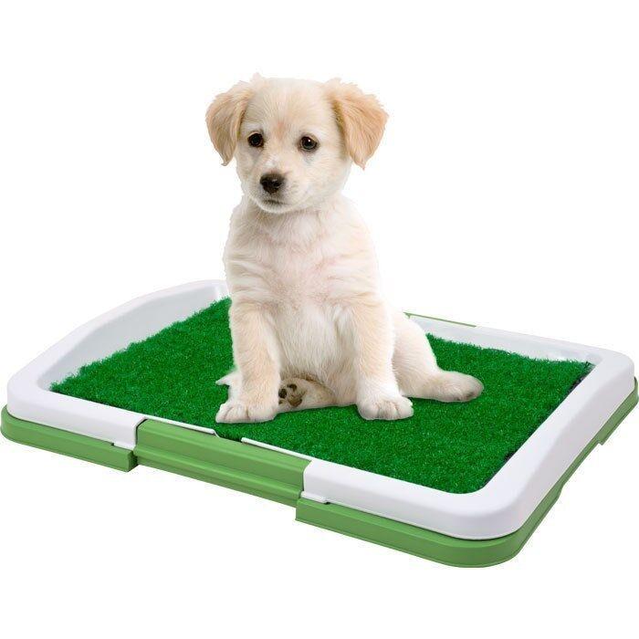 Puppy Potty Trainer Indoor Fake Grass Dog Training Patch Restroom 18.5 X 13 IN