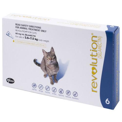cat breeders washington state