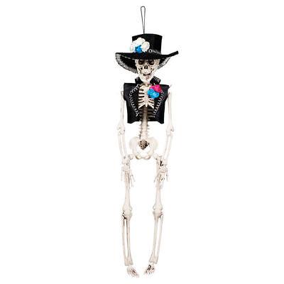 Halloween-dekoration Skelette (NEU Deko-Skelett El Flaco, 40 cm, hängend Halloween Dekoration   )