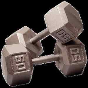 2 X 50 LBS IRON DUMBELL