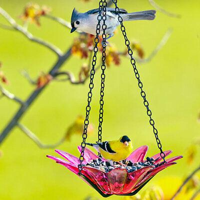 Couronne Co 12 inch Red Hanging Daisy Birdbath and Bird Feeder COURM34920006