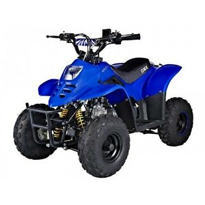 WANTED PIT BIKE, QUADS AND BUGGIES Jimboomba Logan Area Preview