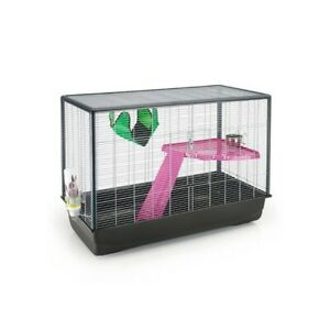 Cage furet Zeno knock down