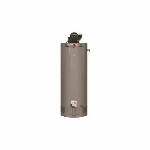 Rheem Performance 50 Gal. 42,000 BTU Natural Gas Power Vent Tank Water Heater