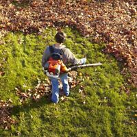 Fall Clean-up! Booking Now.