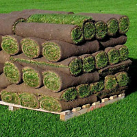 Need a new lawn? Reasonable prices