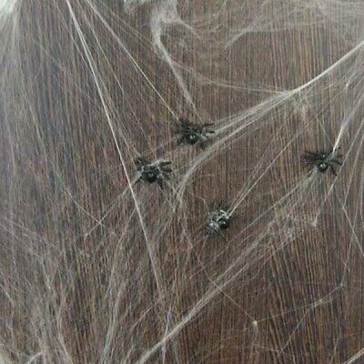 Halloween Deko-Spinnennetz mit 6 Spinnen Helloween Fasching Grusel-Dekoration ()