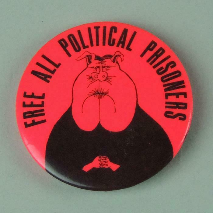 Free All Political Prisoners Pinback Button Chicago 7 Black Panther Cause