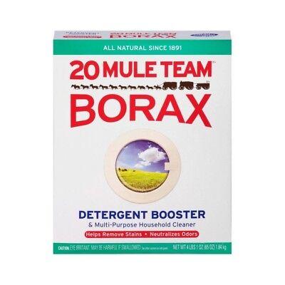 Us Seller   6  1 2Tsp Baggies Of Borax Powder For Slime