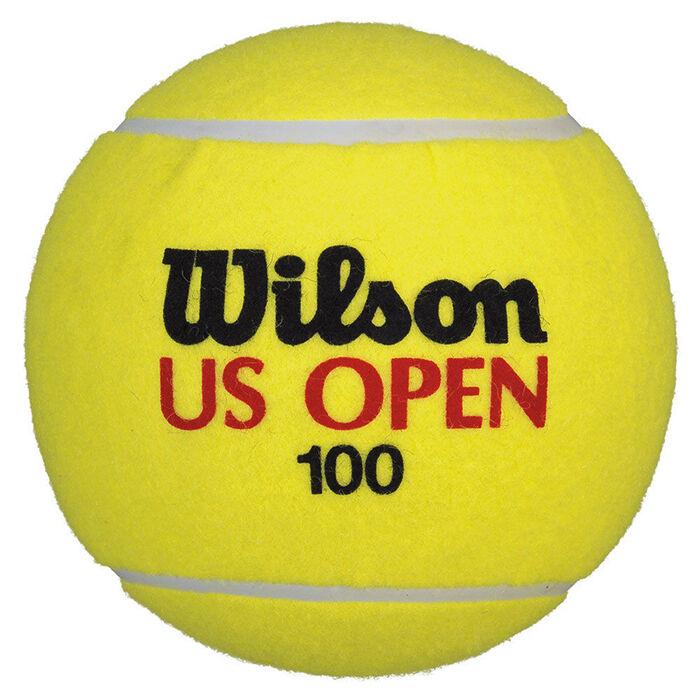 Wilson tennis balls