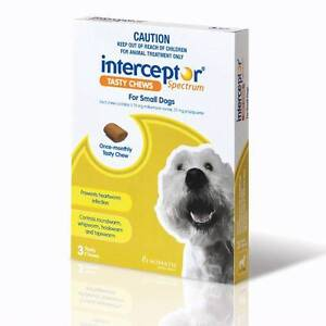 INTERCEPTOR TASTY CHEWS FOR SMALL DOGS Warner Pine Rivers Area Preview