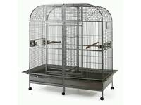 Wanted...double parrot cage