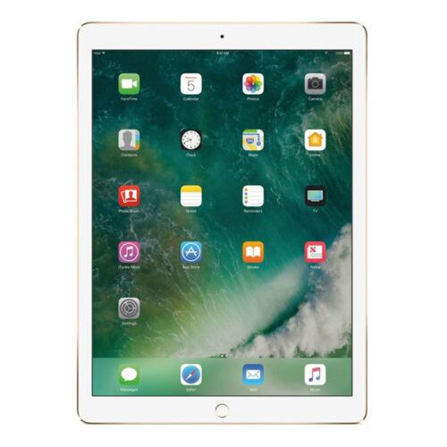 Apple 12.9-Inch iPad Pro (Latest Model) with Wi-Fi 256GB Gold MP6J2LL/A