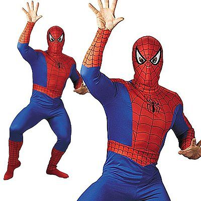 Spiderman Super Hero Halloween Stag Party Adult Cosplay Mens Fancy Dress Costume